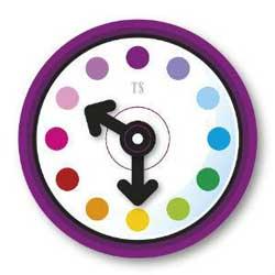 Time Swap logo